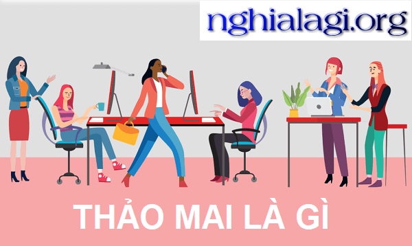nghialagiorg.png
